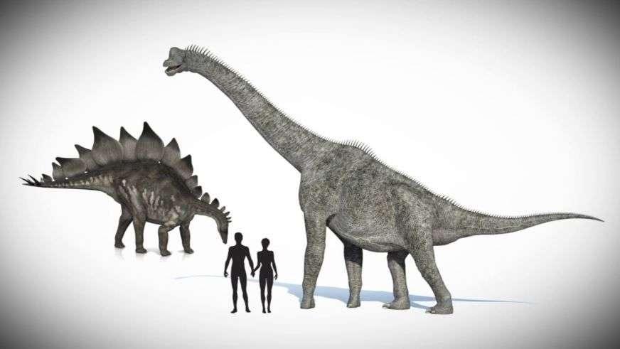 Динозавры и люди: теории, факты и мифы