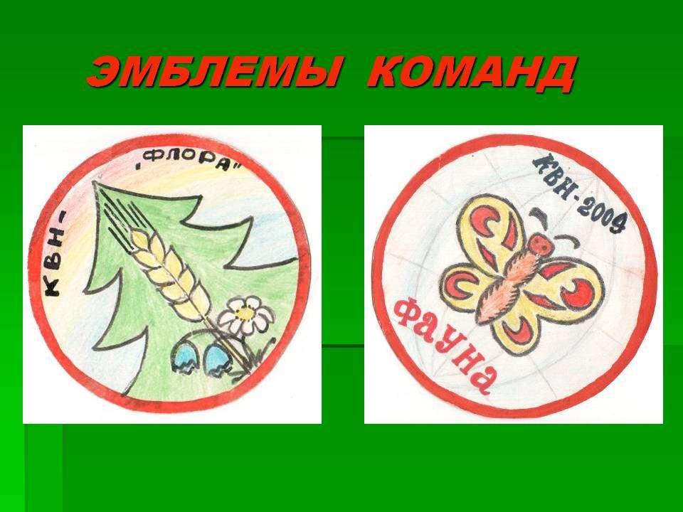 Экологические названия команд и их девизы