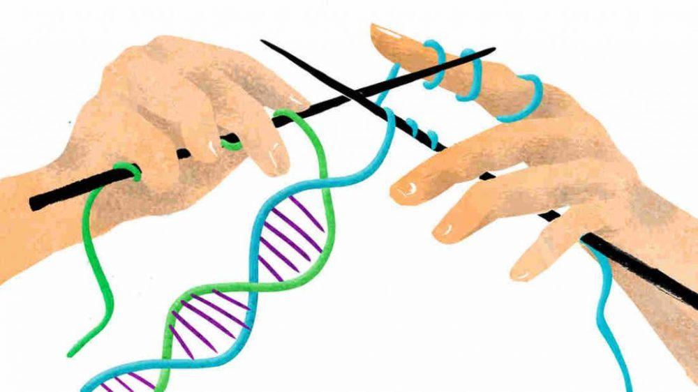 Молекулярные основы наследственности. Роль ДНК в наследственности